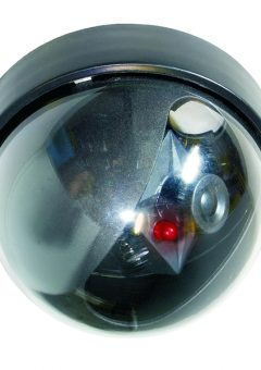 CS44D Dummy Dome Camera with Flashing Light - BYRCS44D 6