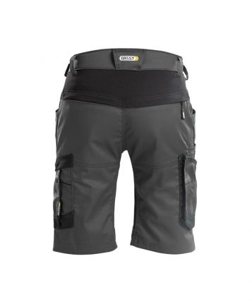 axis_work-shorts-with-stretch_anthracite-grey-black_back