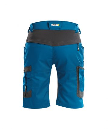 axis_work-shorts-with-stretch_azure-blue-anthracite-grey_back